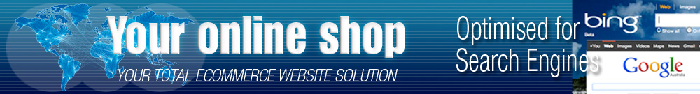 search engine friendly ecommerce website design